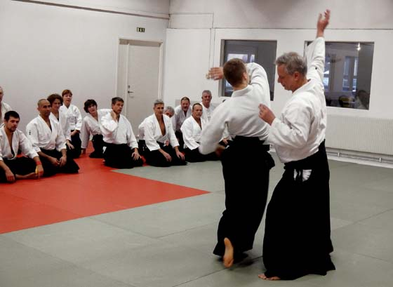 Aikido with Stefan Stenudd.